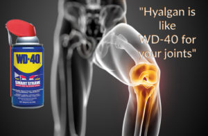 Hyalgan Is Like WD-40 for your joints